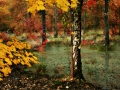 colours-herbst