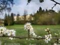 spring20160412_173950