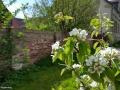 spring20160423_151530
